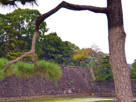 Imperial Palace Wall Scaling