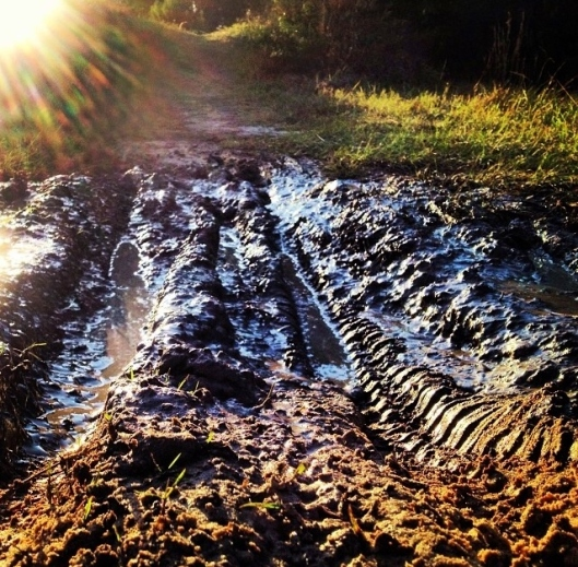 Muddy Trail2