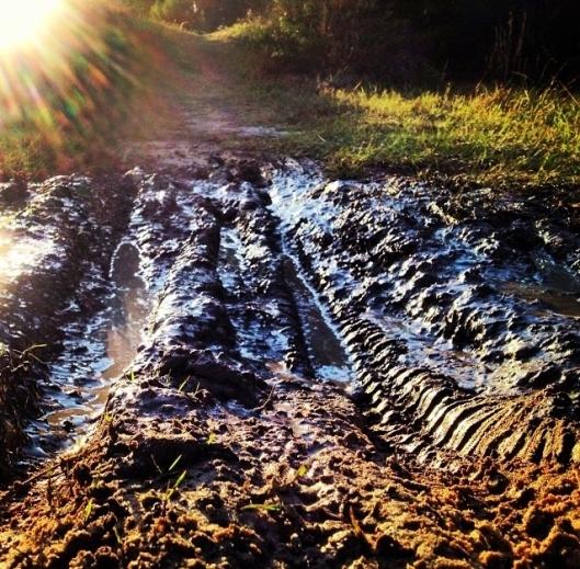 Muddy Trail2