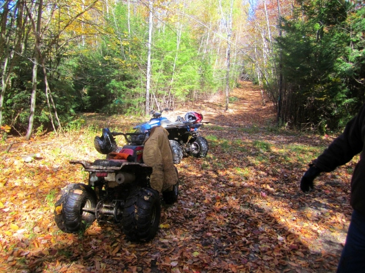 Quads on Trail