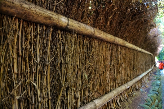 Bamboo Garden Boarder