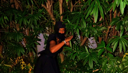 LBD Ninja 4