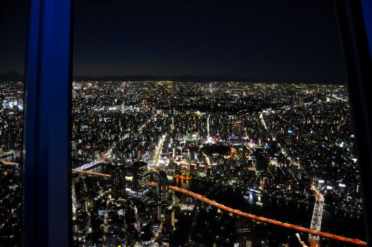 Tokyo Skytree View 1